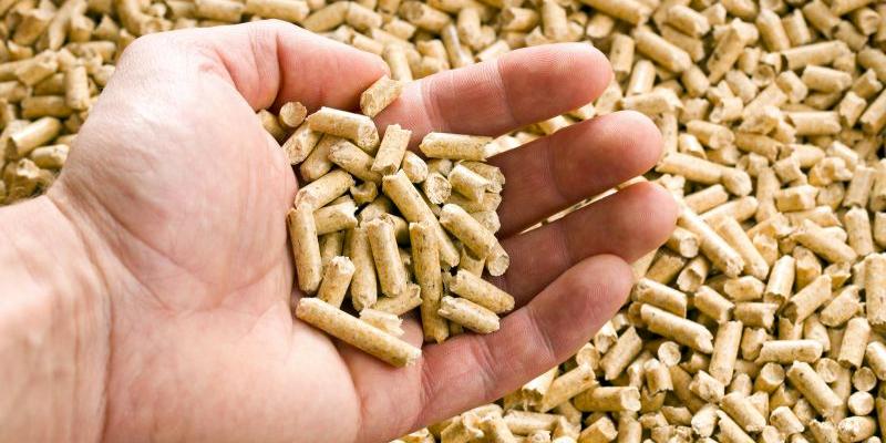 pellet-zamora-biomaser
